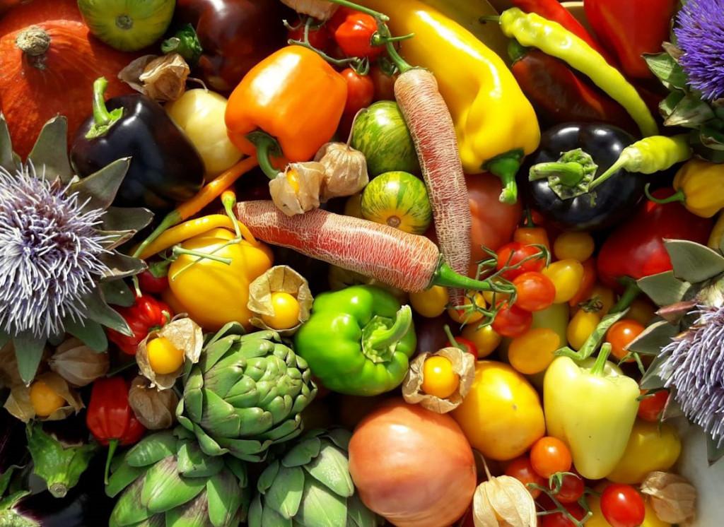 Markt der Erde Parndorf 7. August 2021