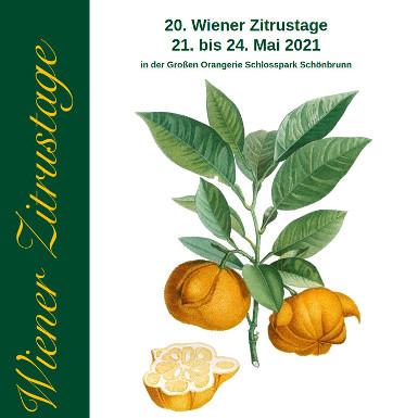 Wiener Zitrustage